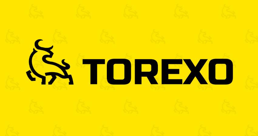 TOREXO Finance. Обзор и отзыв об инвестиционном проекте
