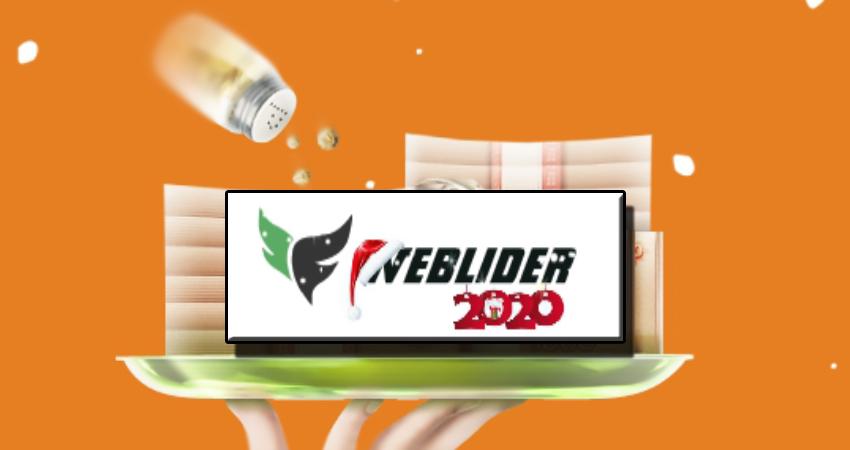 WebLider. Инвестиционный проект без прибыли